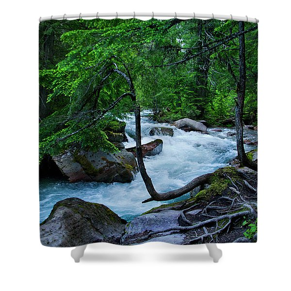 Avalanche Creek Shower Curtain