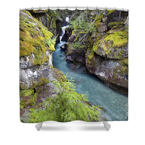 Avalanche Gorge In Glacier National Park Shower Curtain