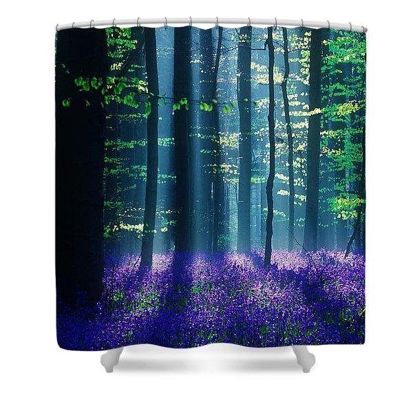 Avatar Shower Curtain