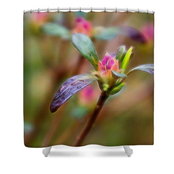 Azalea Bud Energy Shower Curtain