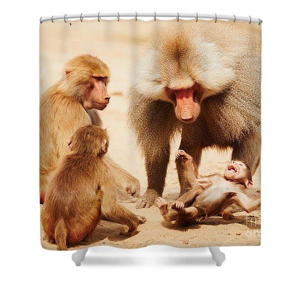 Baboon Family Having Fun In The Desert Shower Curtain