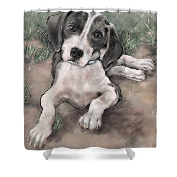 Baby Dane IIi Shower Curtain