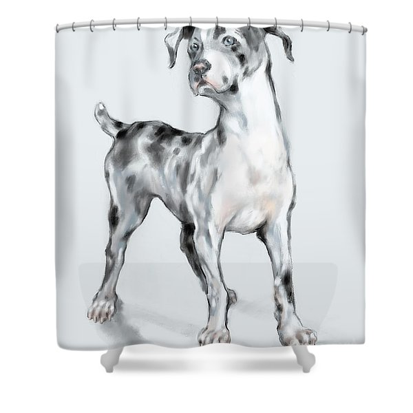 Baby Dane Shower Curtain