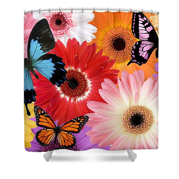 Summer's Design Shower Curtain