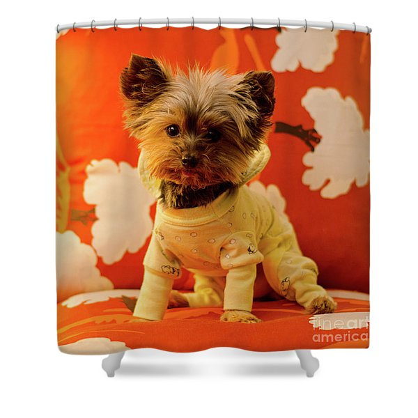 Baby Mel In Pjs Shower Curtain