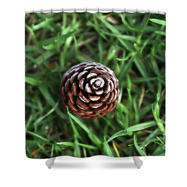 Baby Pine Cone Shower Curtain