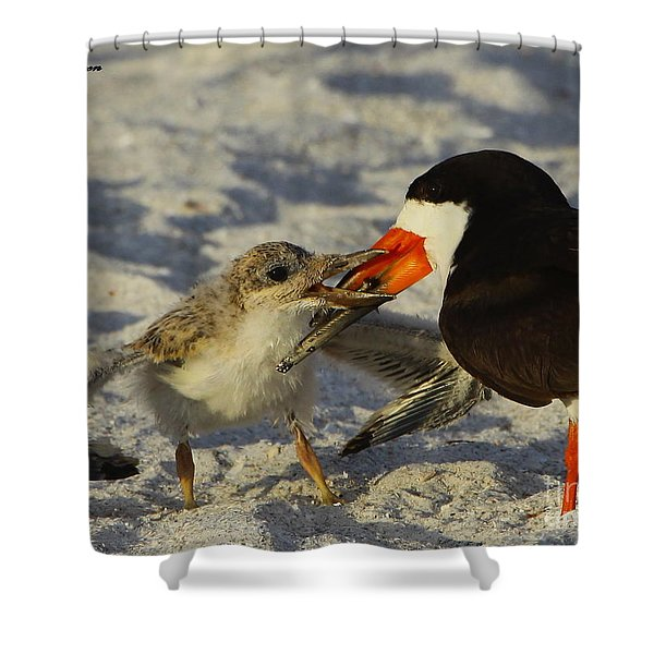 Baby Skimmer Feeding Shower Curtain