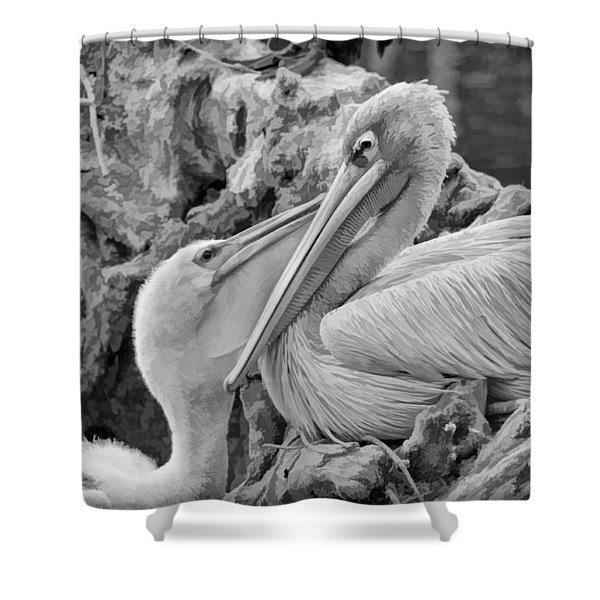 Baby White Pelican Talks To Mother White Pelican Shower Curtain