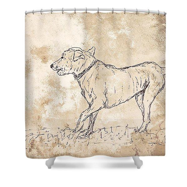 Baci Shower Curtain