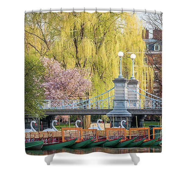 Back Bay Swans Shower Curtain