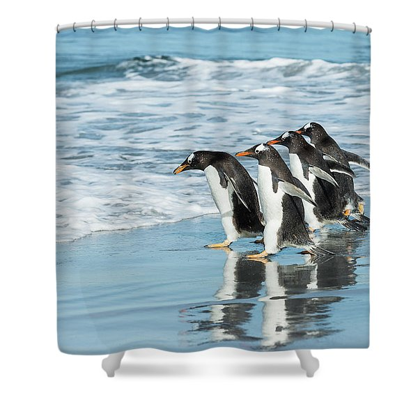 Back To The Sea. Shower Curtain