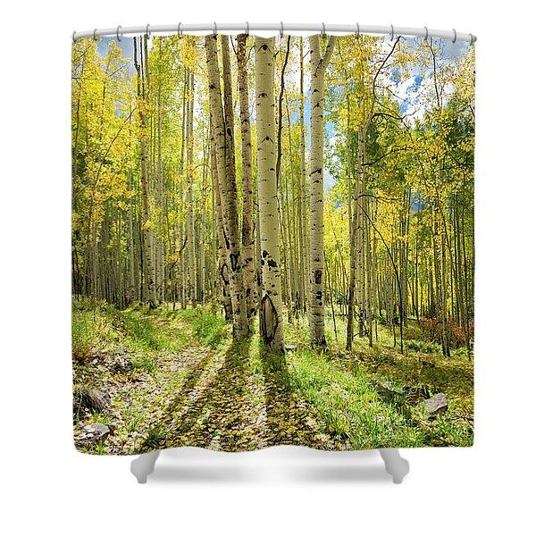 Backlit Aspen Trail Shower Curtain