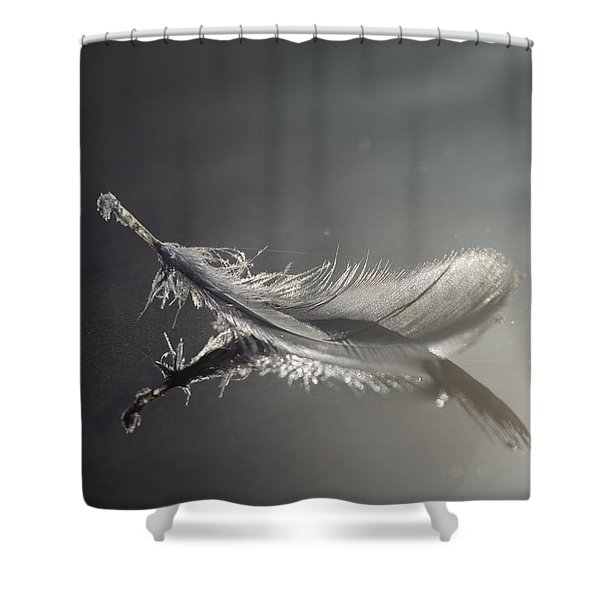 Backlit Feather Shower Curtain