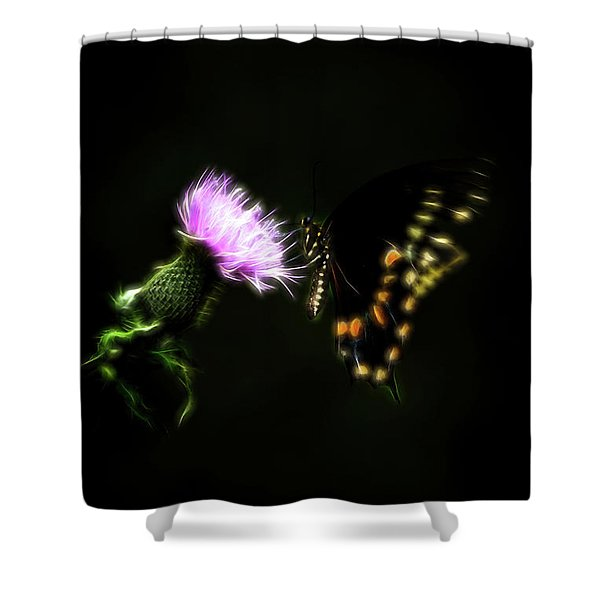 Backroad Butterfly Shower Curtain