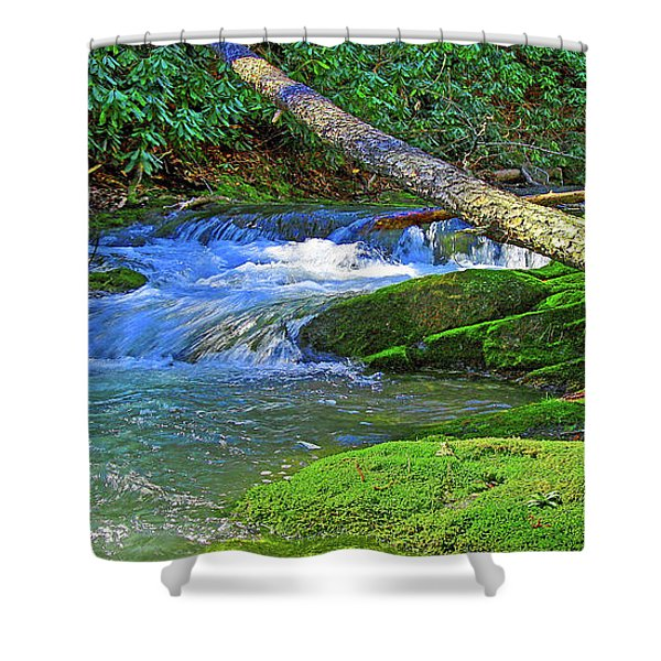 Backwoods Stream Shower Curtain