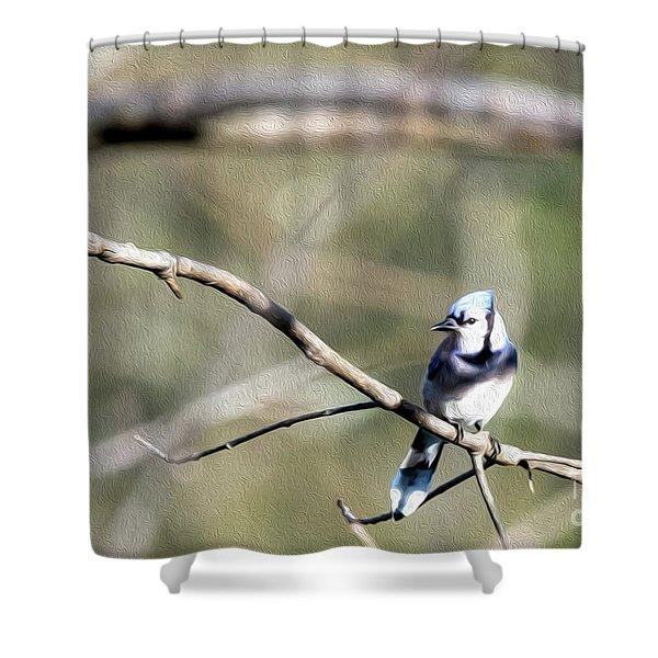 Backyard Blue Jay Oil Shower Curtain