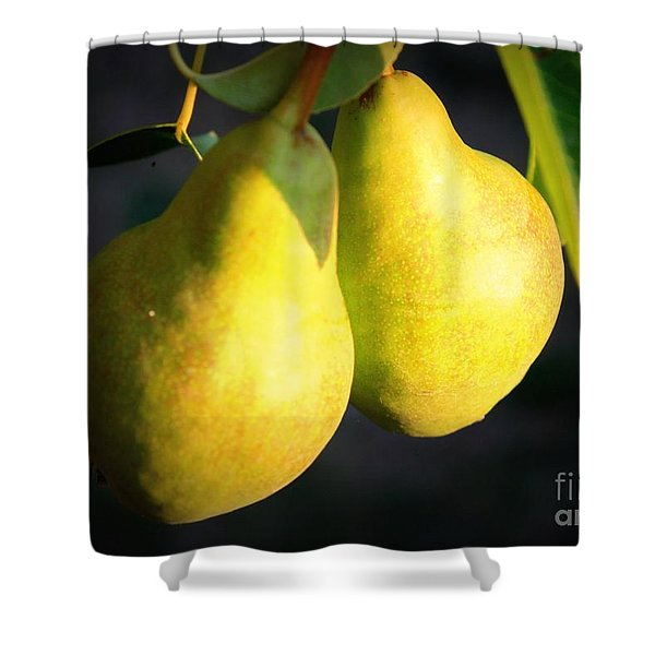 Backyard Garden Series - Two Pears Shower Curtain