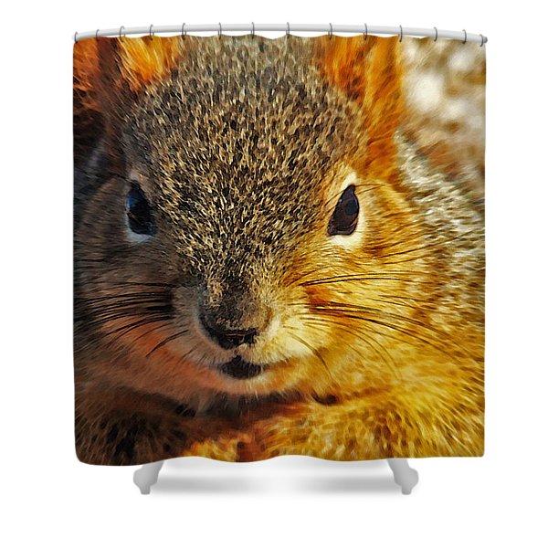 Backyard Squirrel Shower Curtain