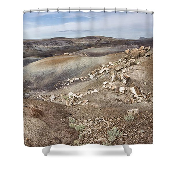 Badlands In Petrified Forest Shower Curtain