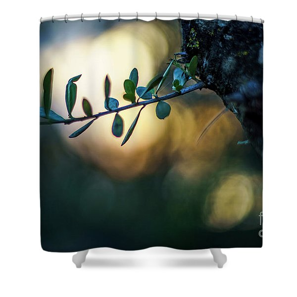 Bahia De Cadiz Natural Park Puerto Real Spain Shower Curtain