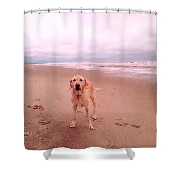 Bailey's Beach Shower Curtain