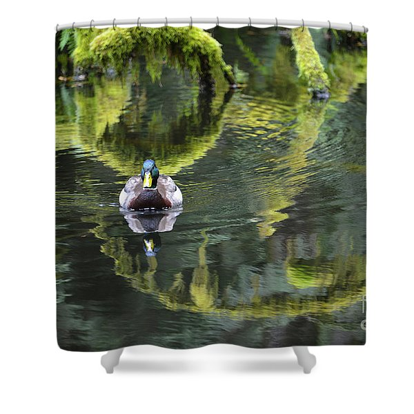 Bainbridge Duck Shower Curtain
