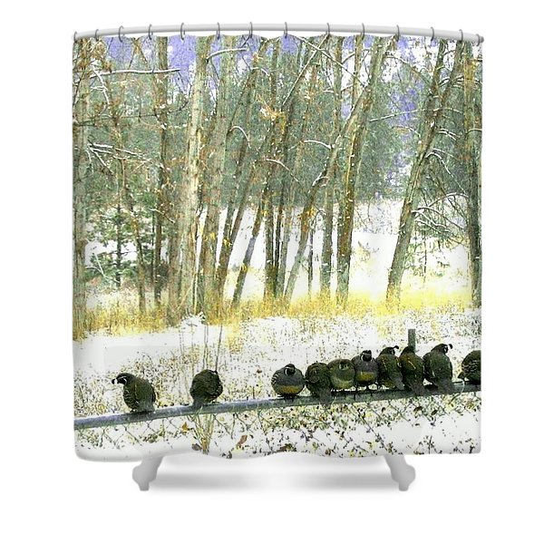 Bakers Dozen Shower Curtain