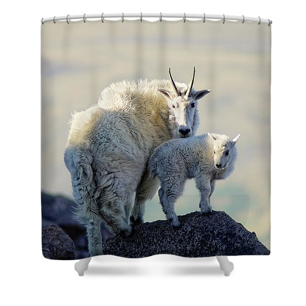 Shower Curtain featuring the photograph Balance by John De Bord