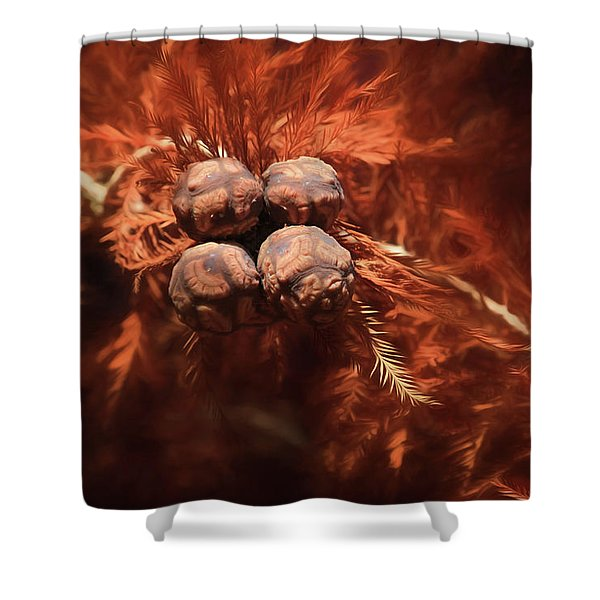 Bald Cypress Cones Shower Curtain