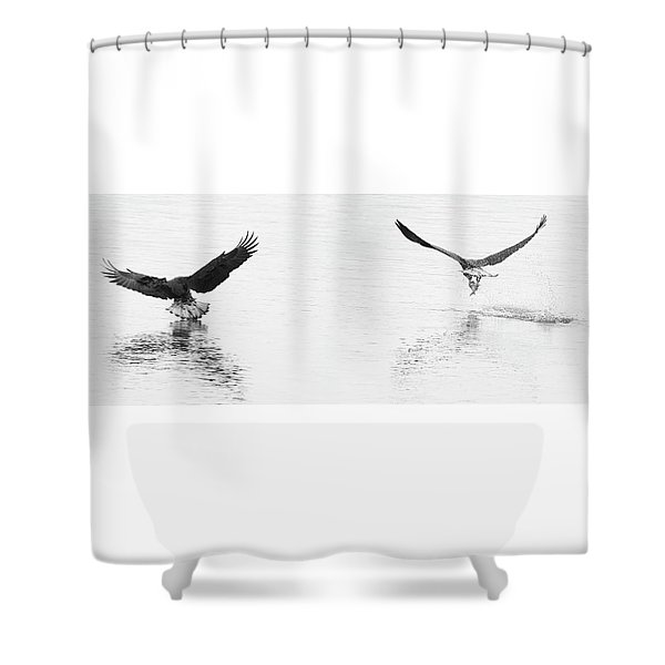 Bald Eagles Fishing Shower Curtain