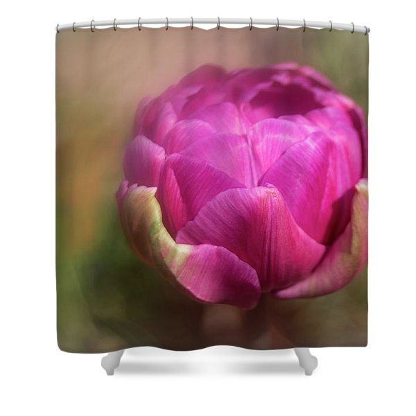 Ball Of Colour Shower Curtain
