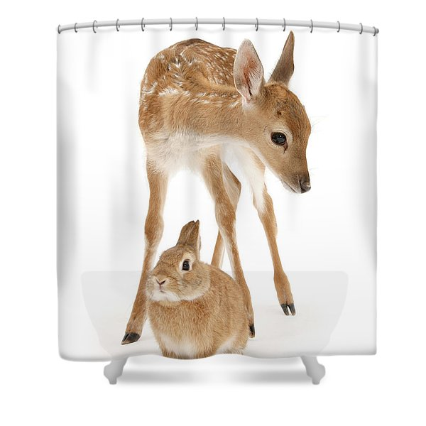 Bambi And Thumper Shower Curtain