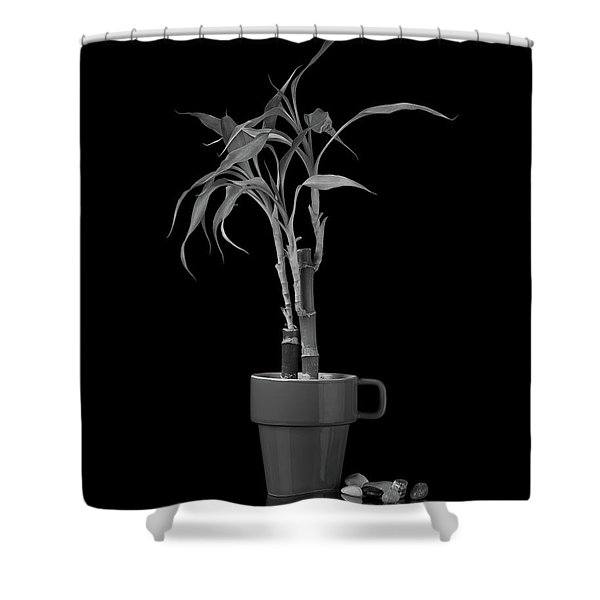 Bamboo Plant Shower Curtain
