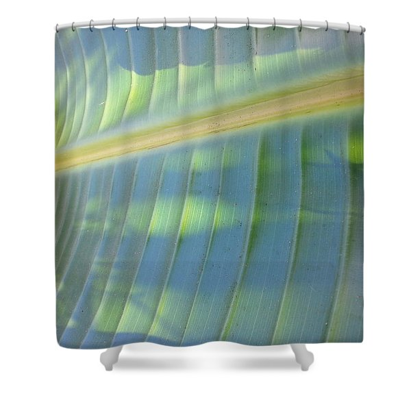 Banana Leaf 01 - Side Shower Curtain