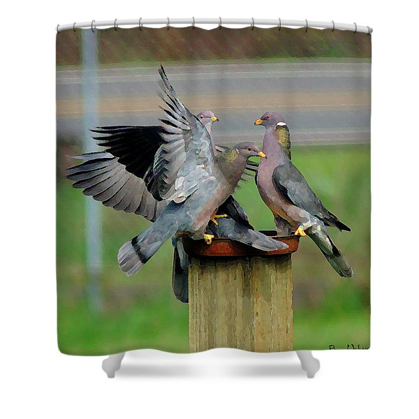 Band-tailed Pigeons #1 Shower Curtain