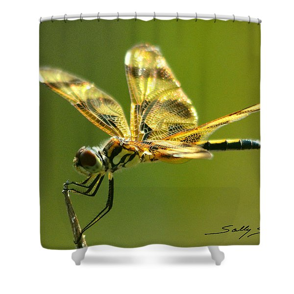 Banded Pennant, Female Shower Curtain