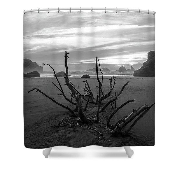 Bandon Beach Tree Shower Curtain