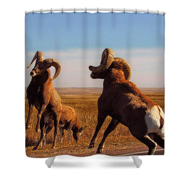 Bang Of The Bighorn Shower Curtain