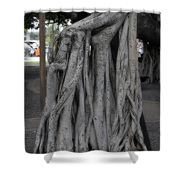 Banyan Tree, Maui Shower Curtain