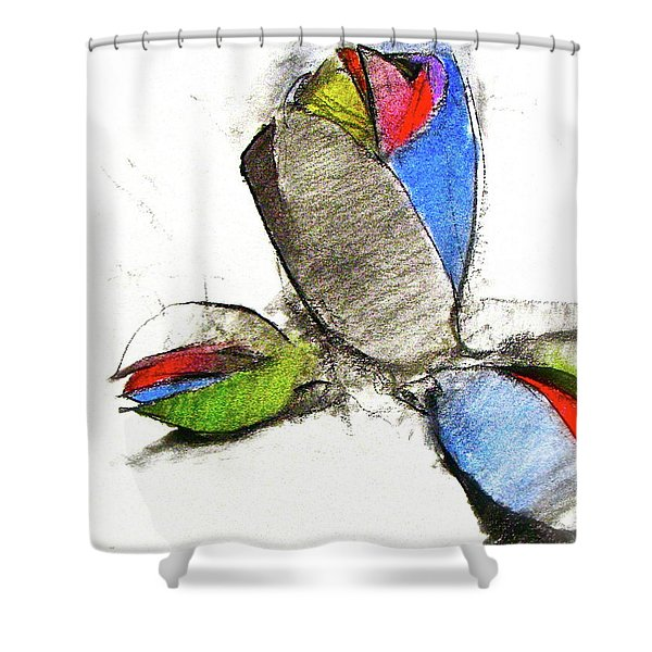 Shower Curtain featuring the drawing Bar Nickle  by Cliff Spohn