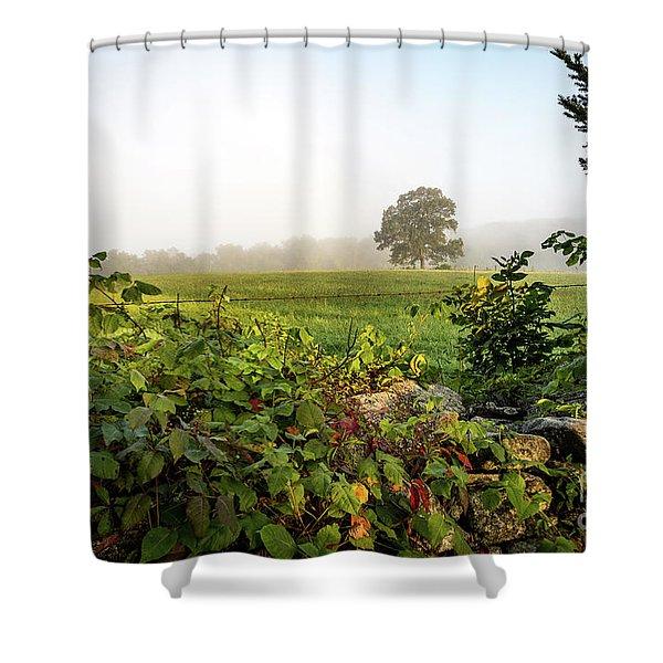 Misty Meadow Shower Curtain