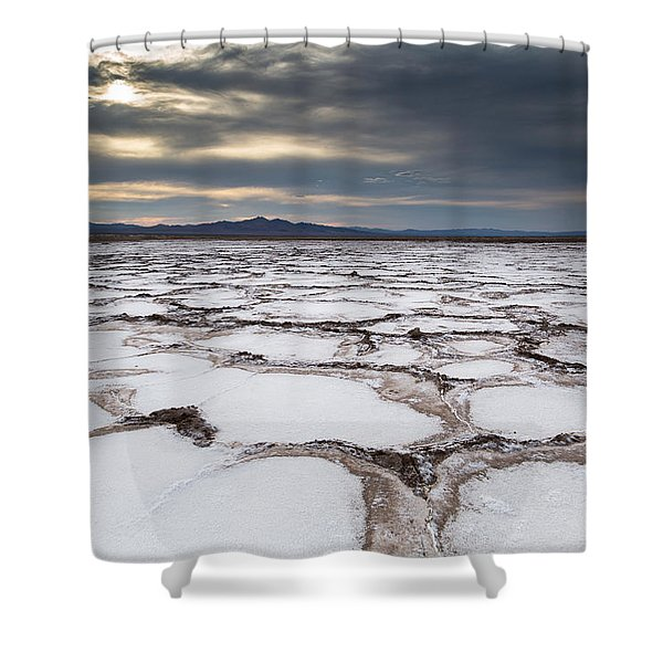 Bare And Boundless Shower Curtain