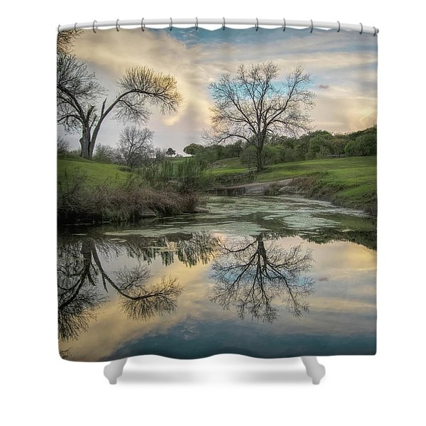 Bare Tree Reflections Shower Curtain