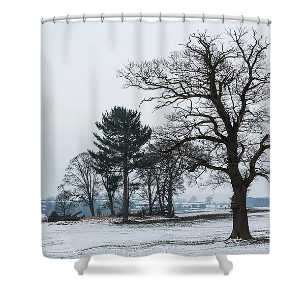 Bare Trees In The Snow Shower Curtain