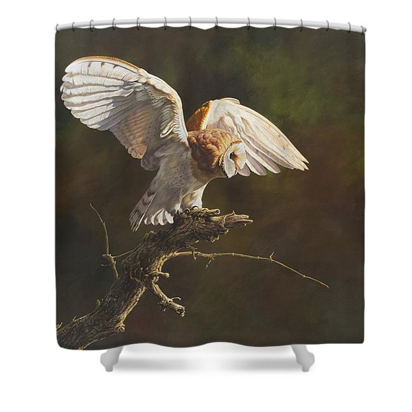 Shower Curtain featuring the painting Barn Owl by Alan M Hunt