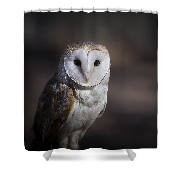 Shower Curtain featuring the photograph Barn Owl by Andrea Silies