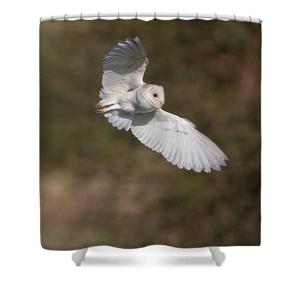Barn Owl Wings Shower Curtain