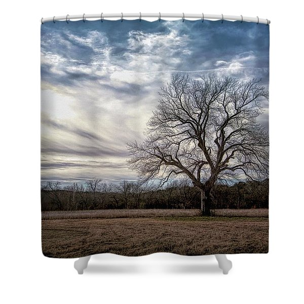 Baron Tree Of Winter Shower Curtain