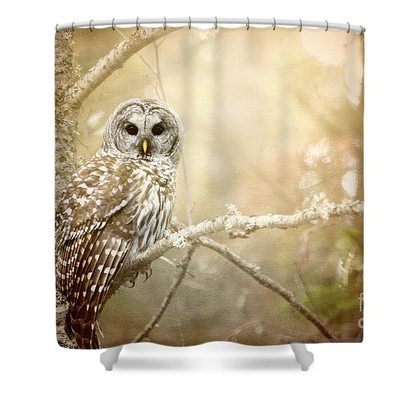 Barred Owl - Woodland Fellow Shower Curtain