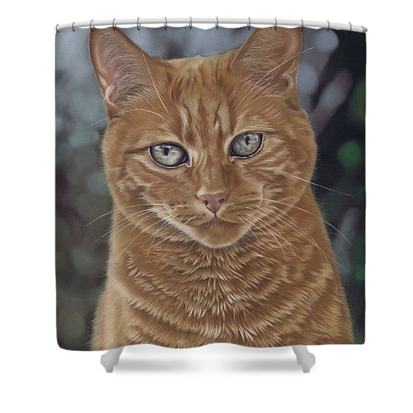 Barry The Cat Shower Curtain